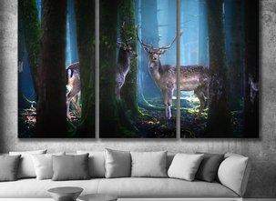 Ljuddämpande - Forest
