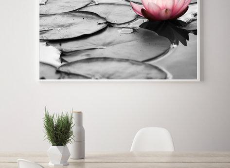 Prints - Flor