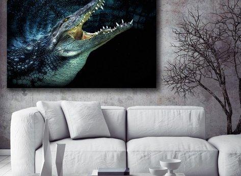 Ljuddämpande - Krokodil