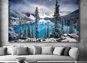 Photo Art - Frozen