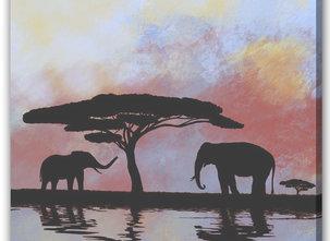 Elephants / Oasis
