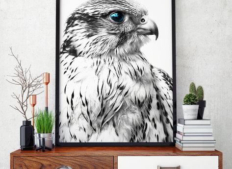 Prints - Silver Eagle