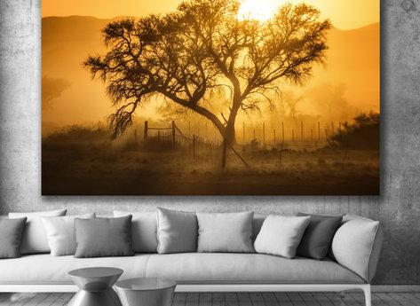 Photo Art - Home