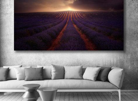 Photo Art - La Mancha