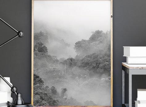 Prints - Fog