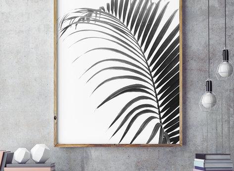 Prints - Palma